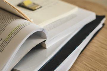 ap german review book
